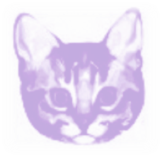 Scaredy-Cat Logo